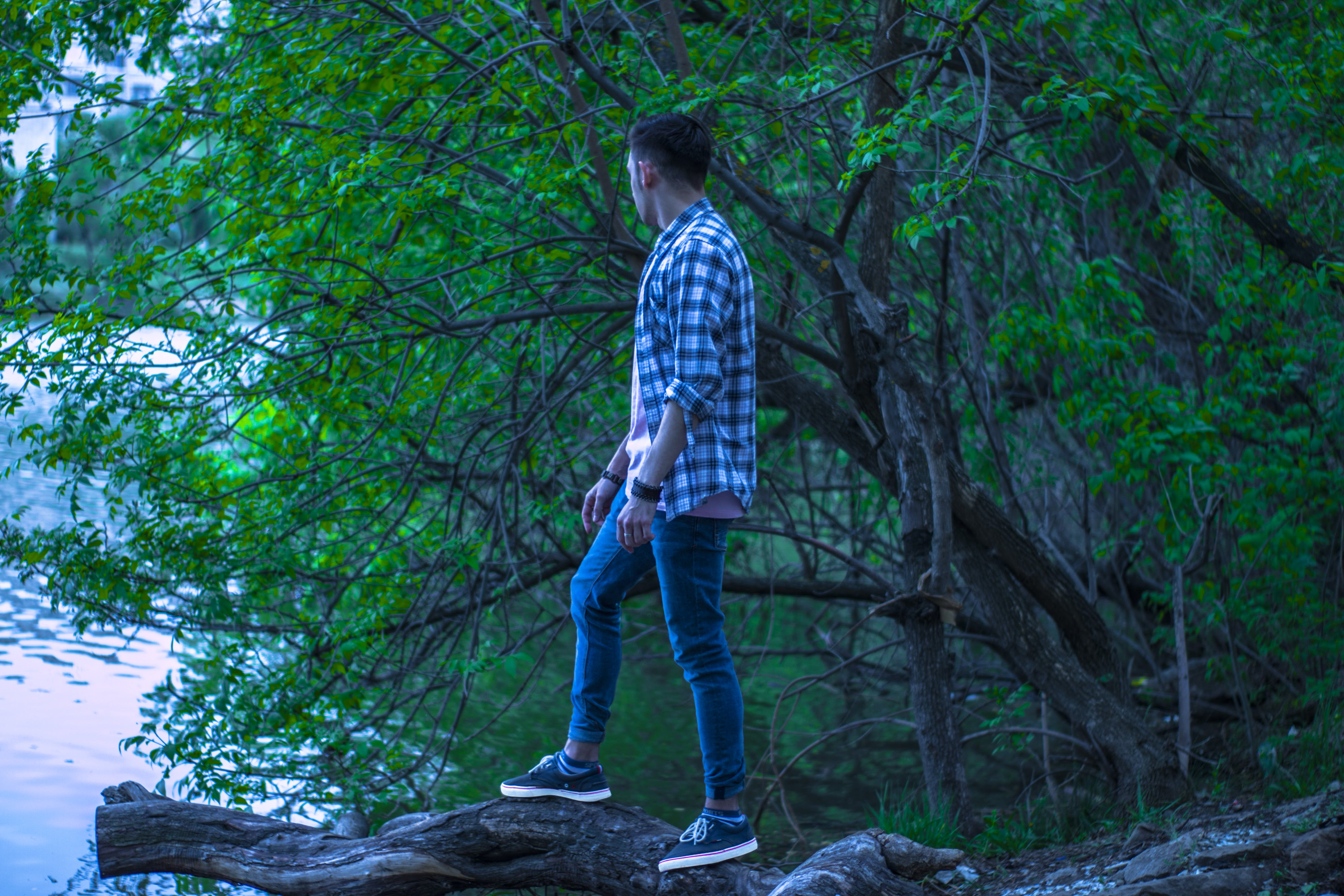Man in Blue and Black Gingham Button-up Top Standing on Brown Wood Log in Forest