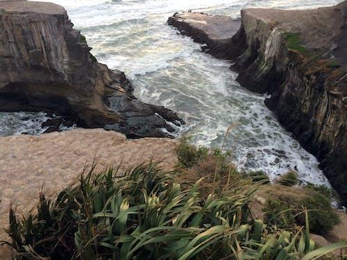 ##海灘#塘鵝海岸線 的 免費圖庫相片