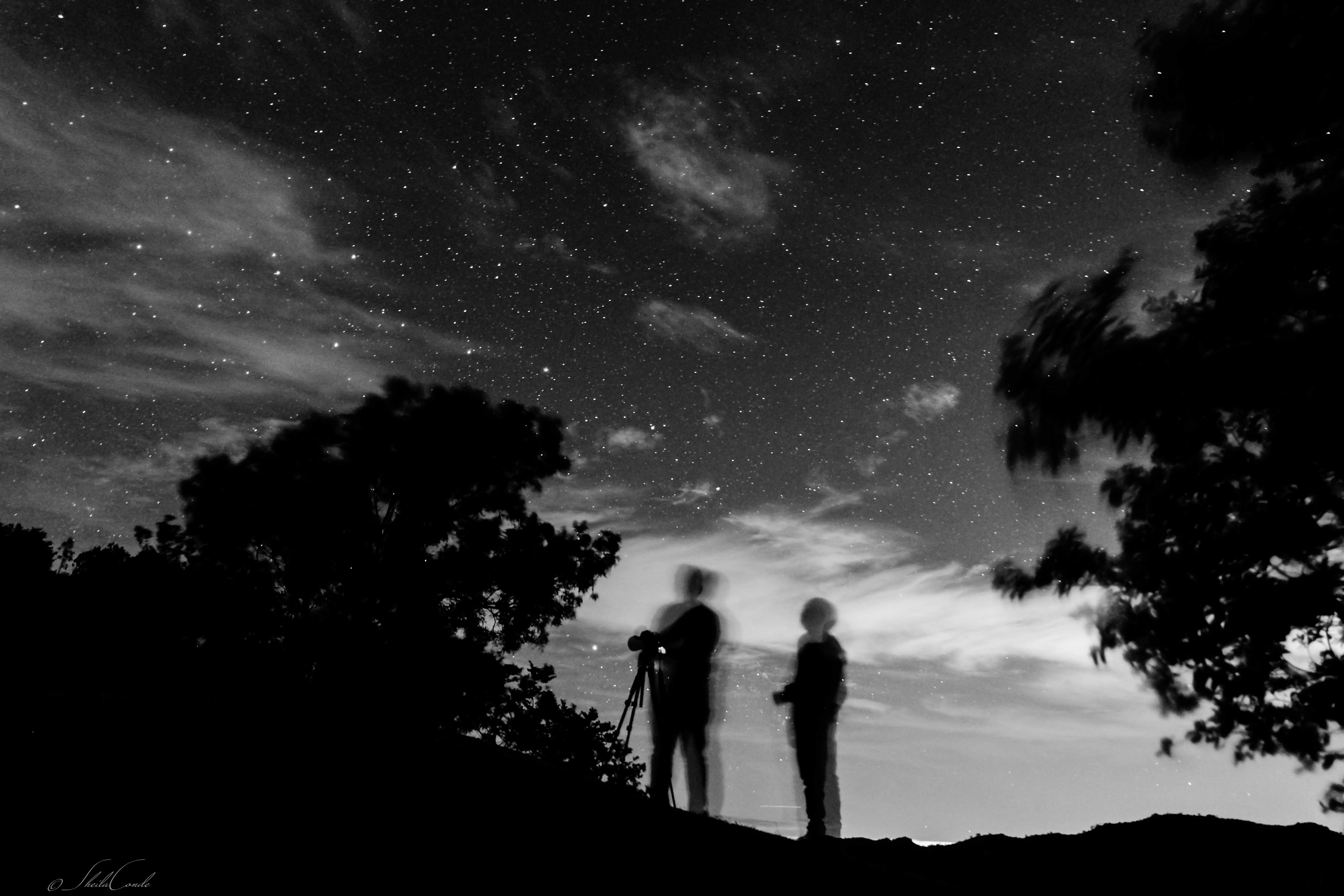 Free stock photo of astronomy, astrophotography, black and white, father