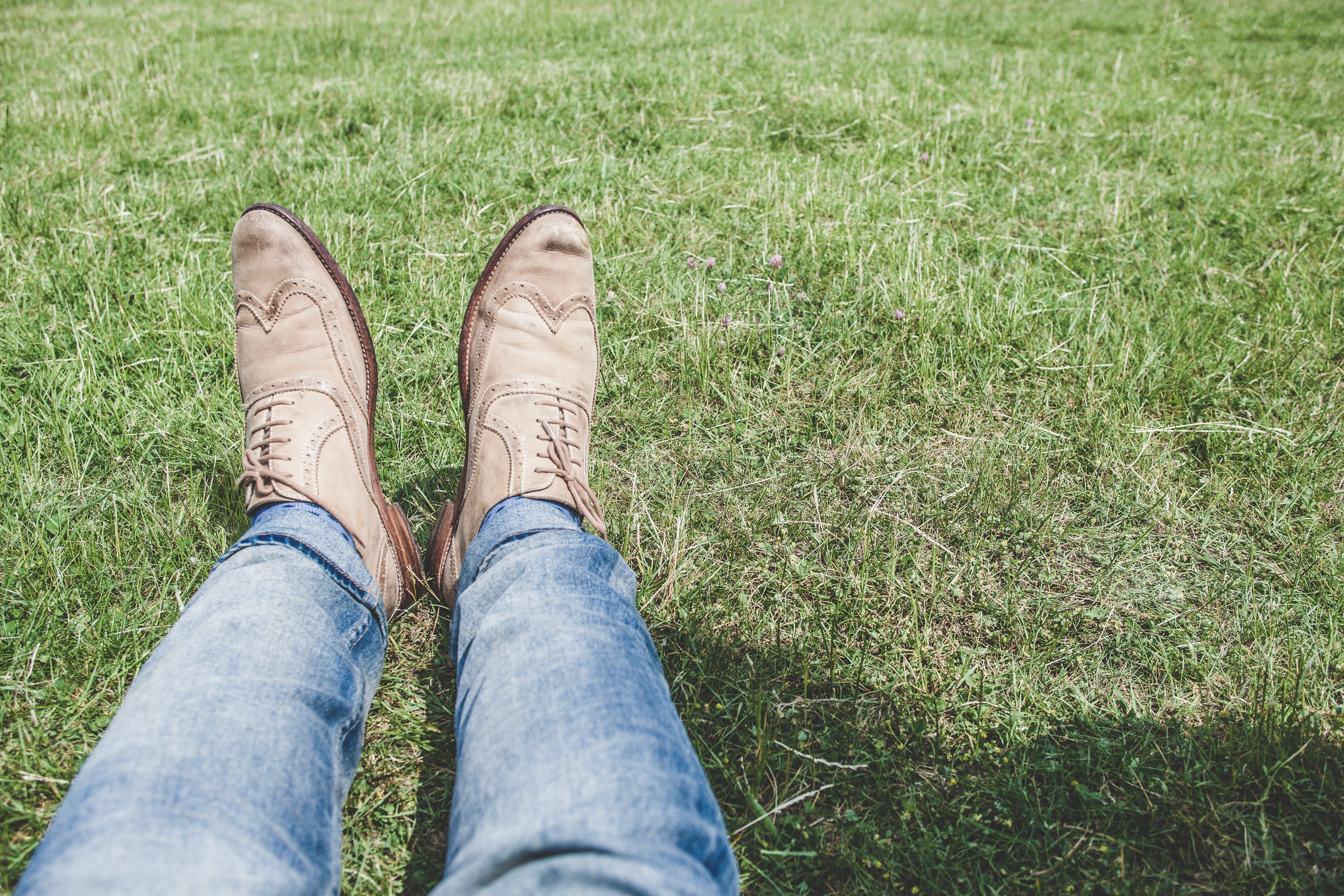 Person Wearing Blue Denim Jeans Sitting on Grass