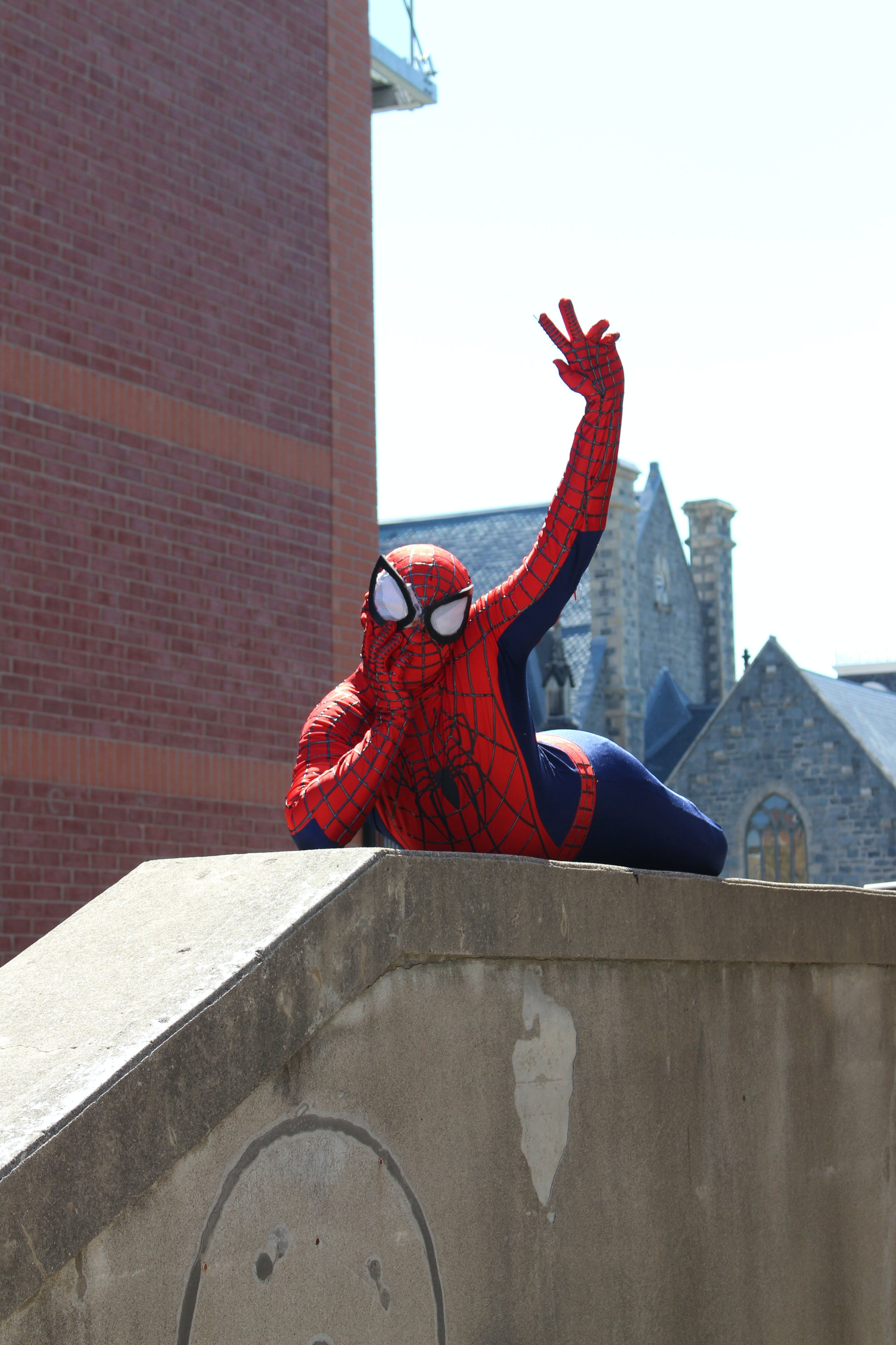 Free stock photo of funny, hero, spider man, spiderman