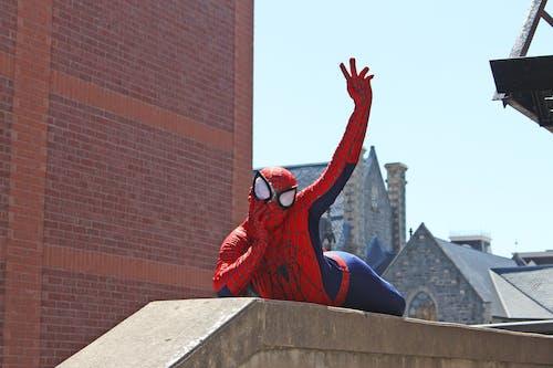 Photos gratuites de amusant, homme araignée, merveille, super héros