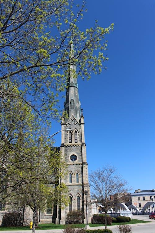 Photos gratuites de arbre, architecture, église