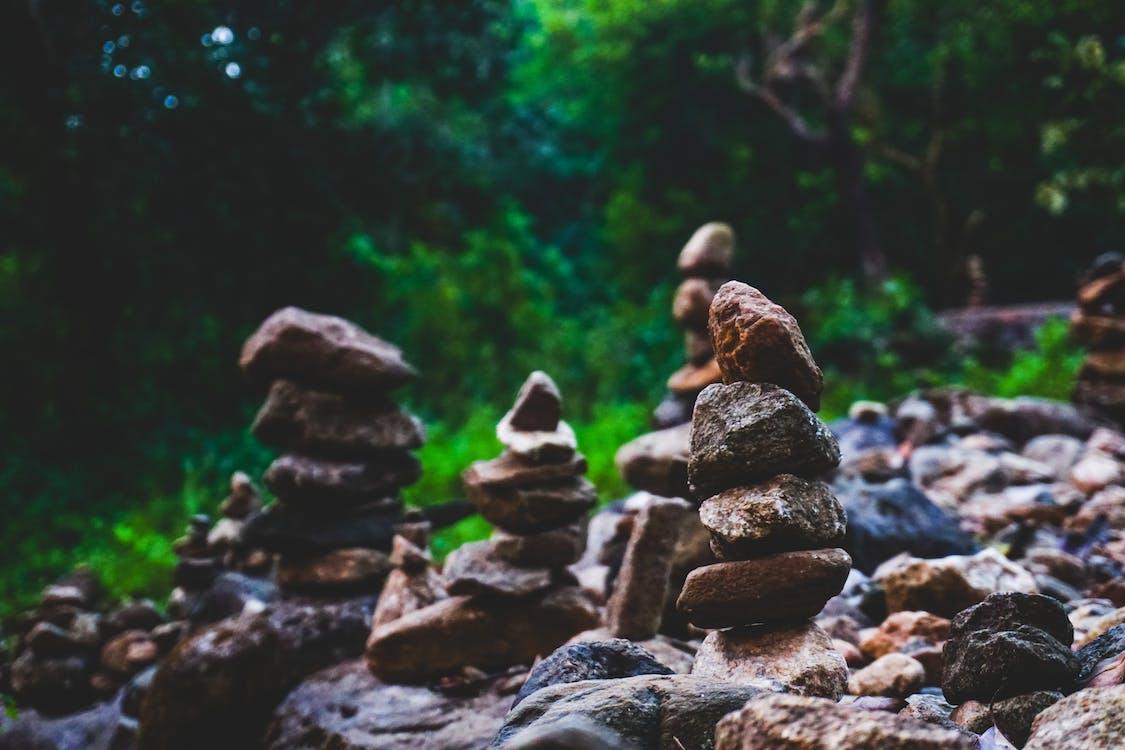 경치, 공원, 균형