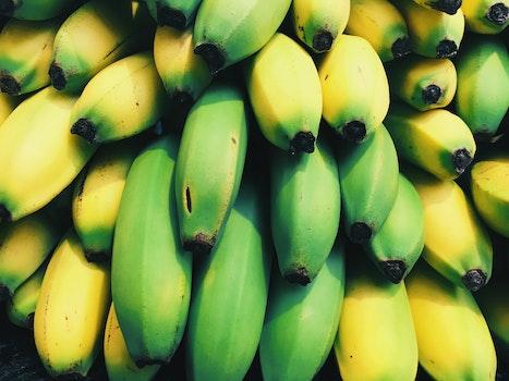 Green Banana Beside Yellow Banana