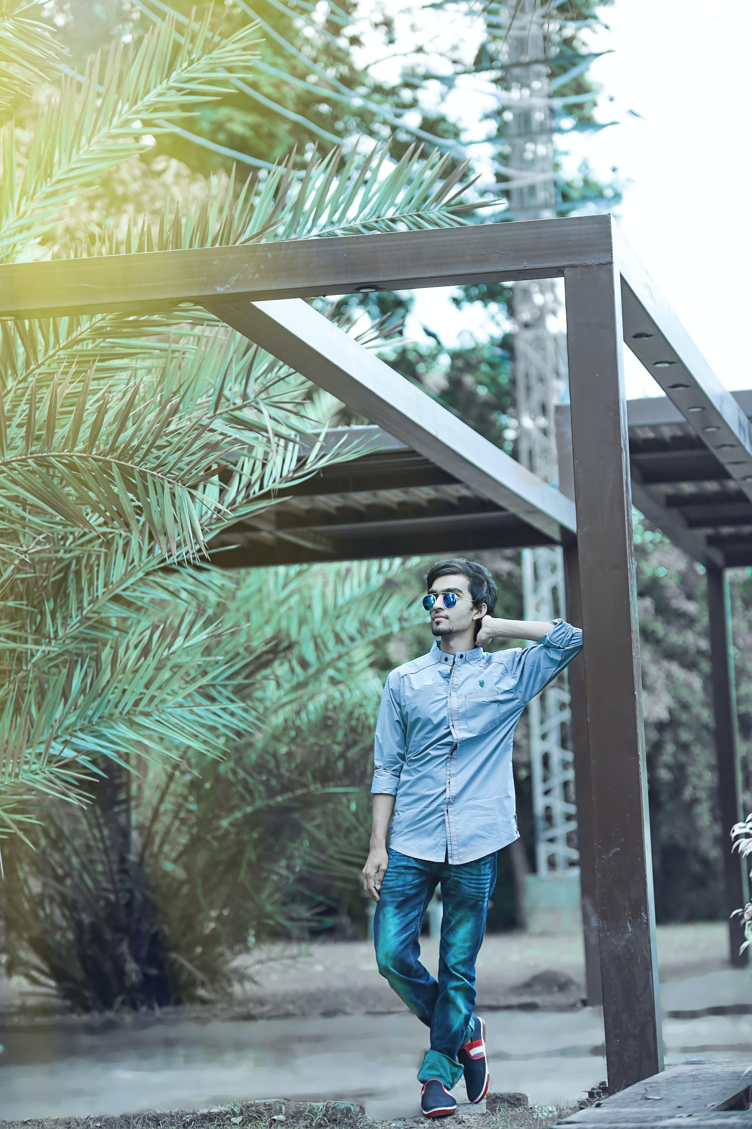 Бесплатное стоковое фото с активный отдых, деревья, деревянный, дневной свет