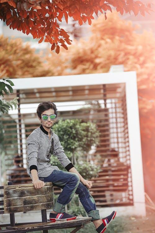 Základová fotografie zdarma na téma denní světlo, dřevěná lavička, efekt, focení