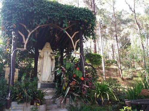Free stock photo of catholicism, garden, saint
