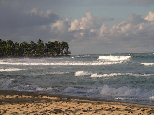 Free stock photo of beach, caribbean, ocean