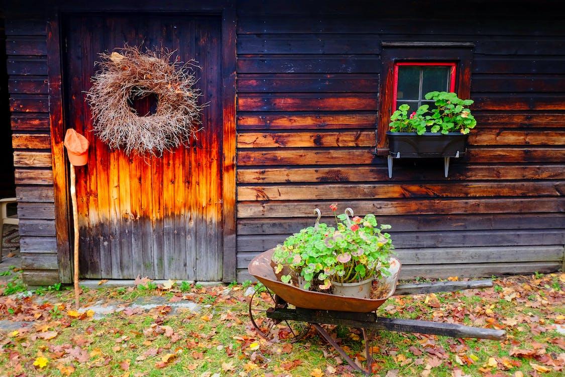 나무 오두막, 통나무집