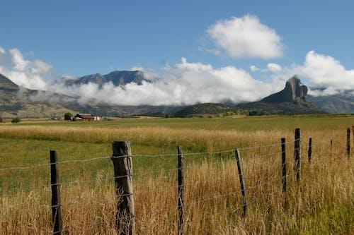 neddle rock, 针岩牧场, 针岩科罗拉多州 的 免费素材照片