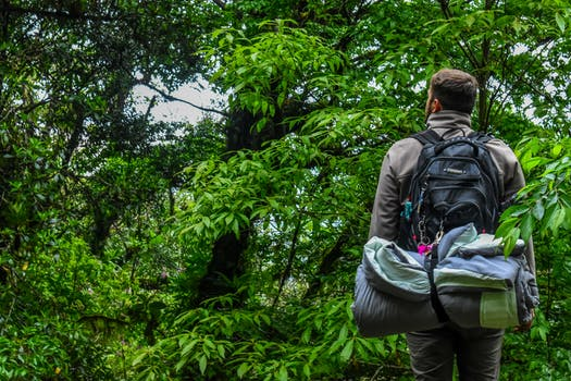 Man Carrying Camping Backpack Standing In-front of Tree