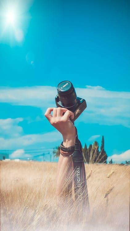 Canon, dospelý, fotoaparát