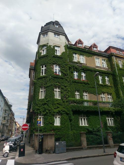 プラントビル, 生い茂った建物の無料の写真素材