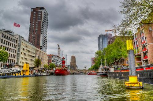 Foto profissional grátis de água, arquitetura, árvores, centro da cidade