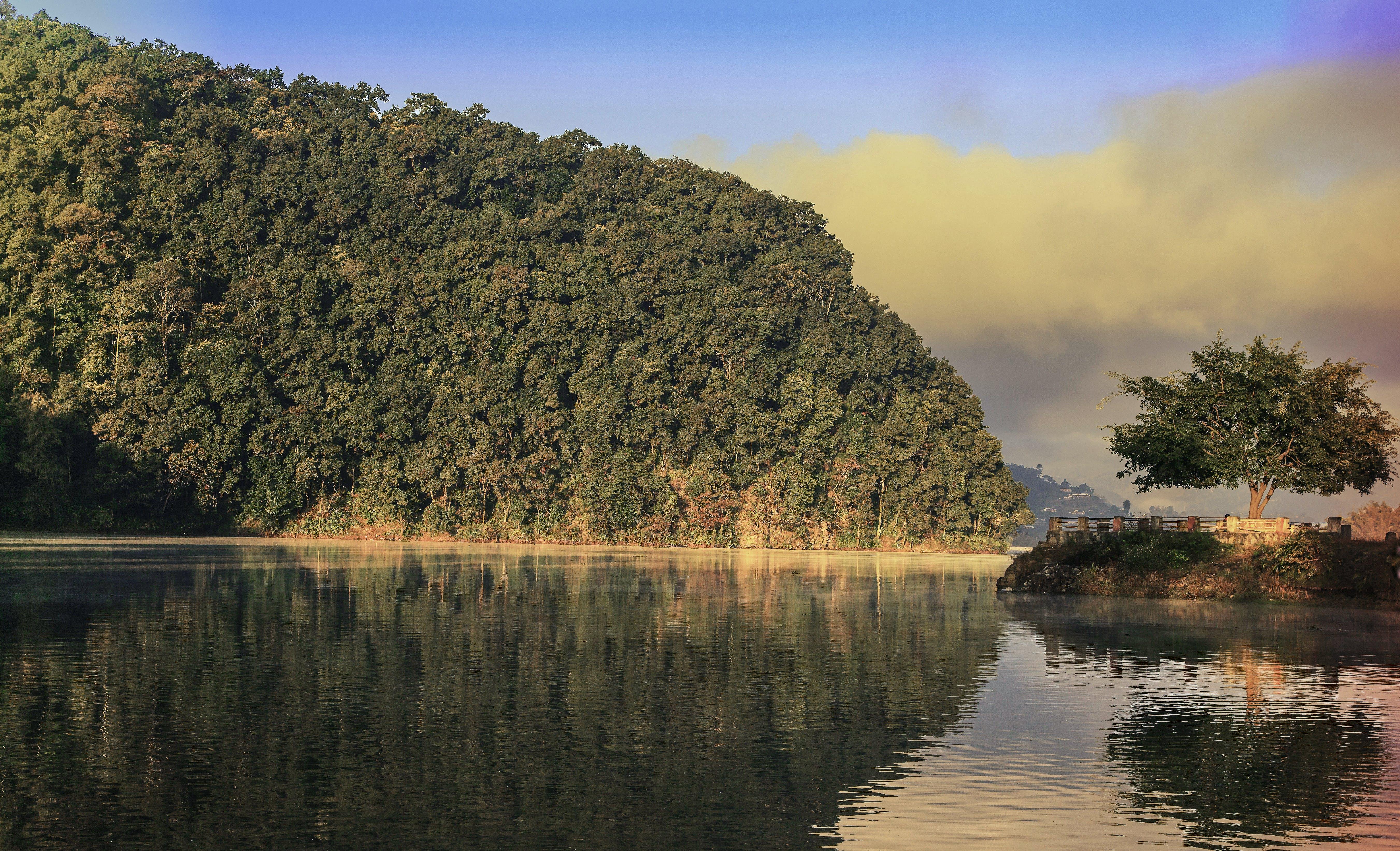 Ingyenes stockfotó édesvíz, ég, erdő, fák témában