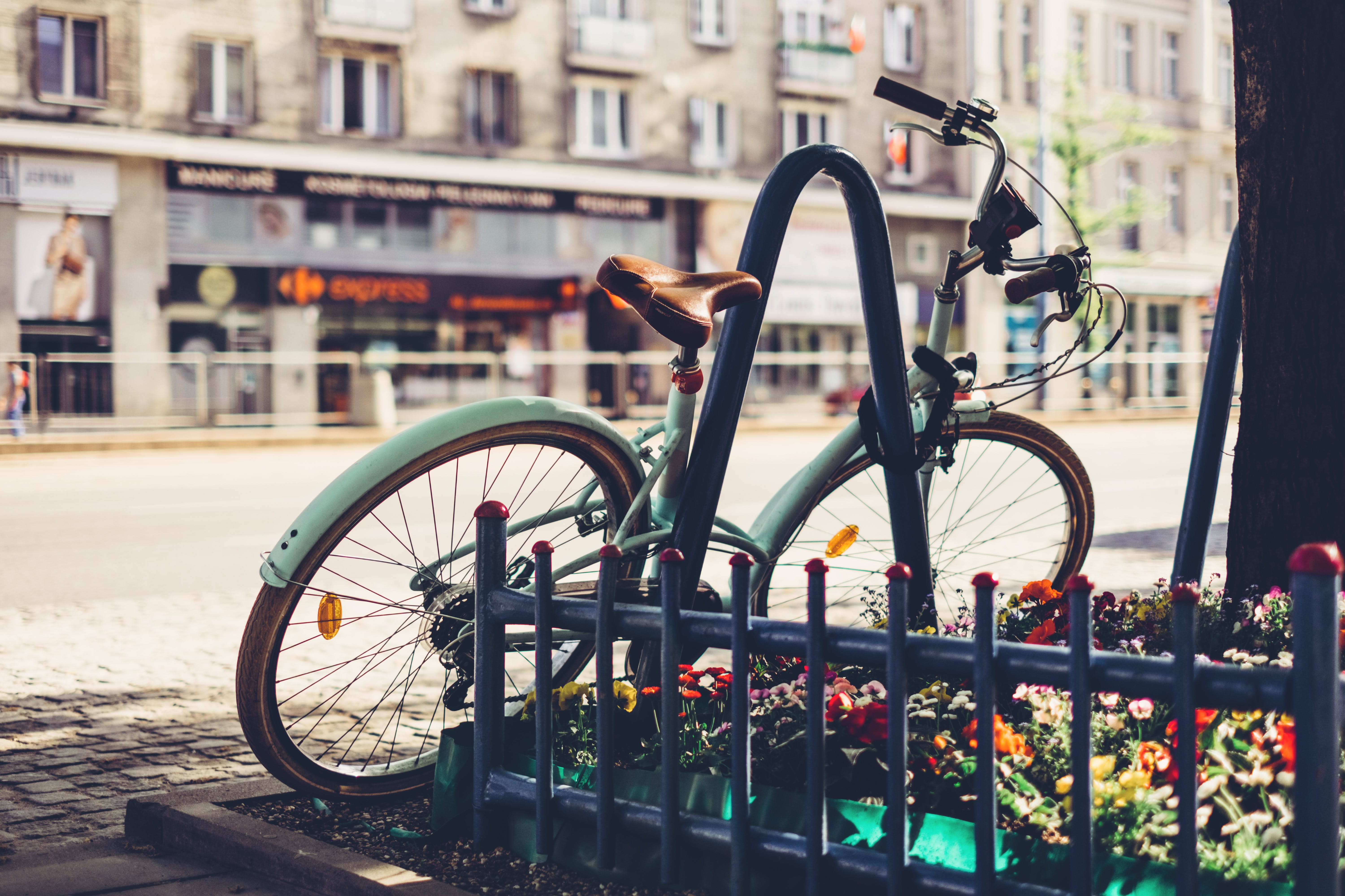 Photo of Teal Bicycle Locked on Black Metal Arch Near Tree
