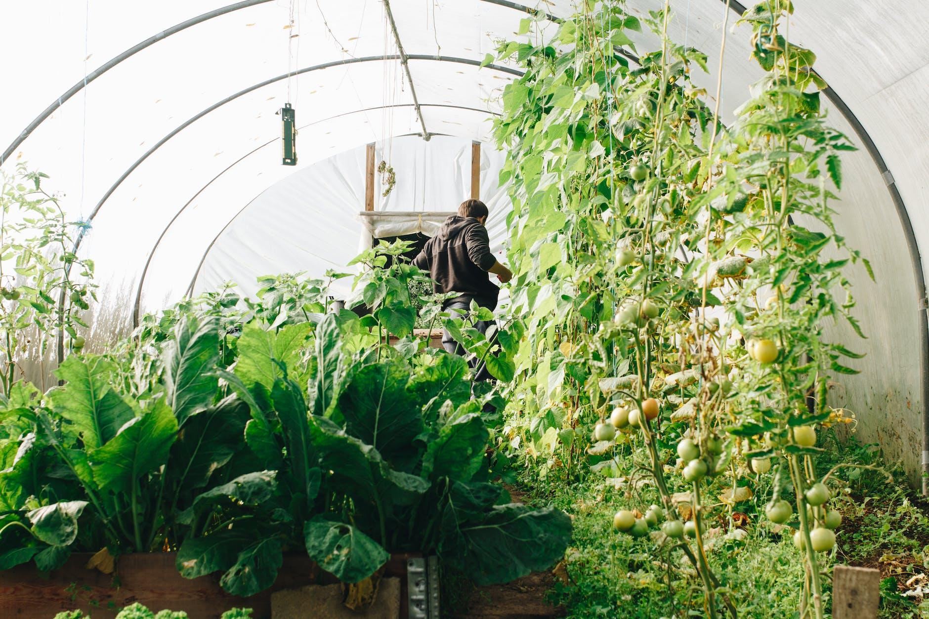 11 Gardening Hacks to Make Life Easier