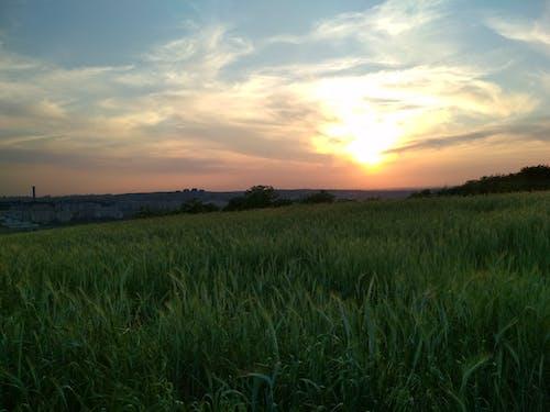 傍晚的天空 的 免费素材照片