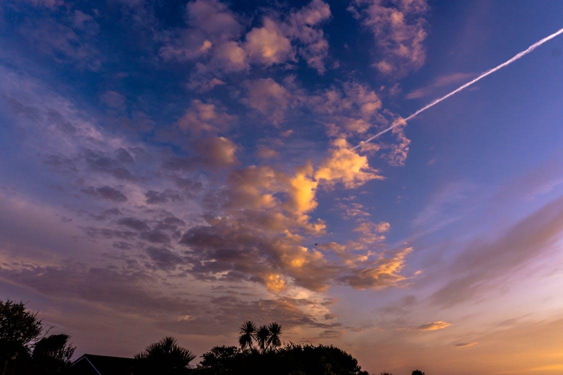 Gratis lagerfoto af fly, flyvemaskiner, gylden time