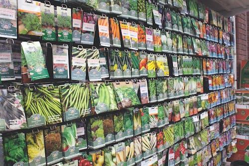 商店, 廠, 有機, 有機種子 的 免費圖庫相片