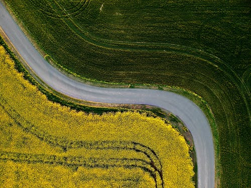 Aerial Photography of Country Road Between Green Grass Field