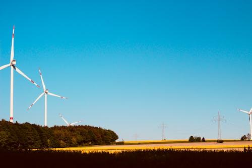 Kostnadsfri bild av #skog, gyllene sol, kraftledningar, vindsnurra