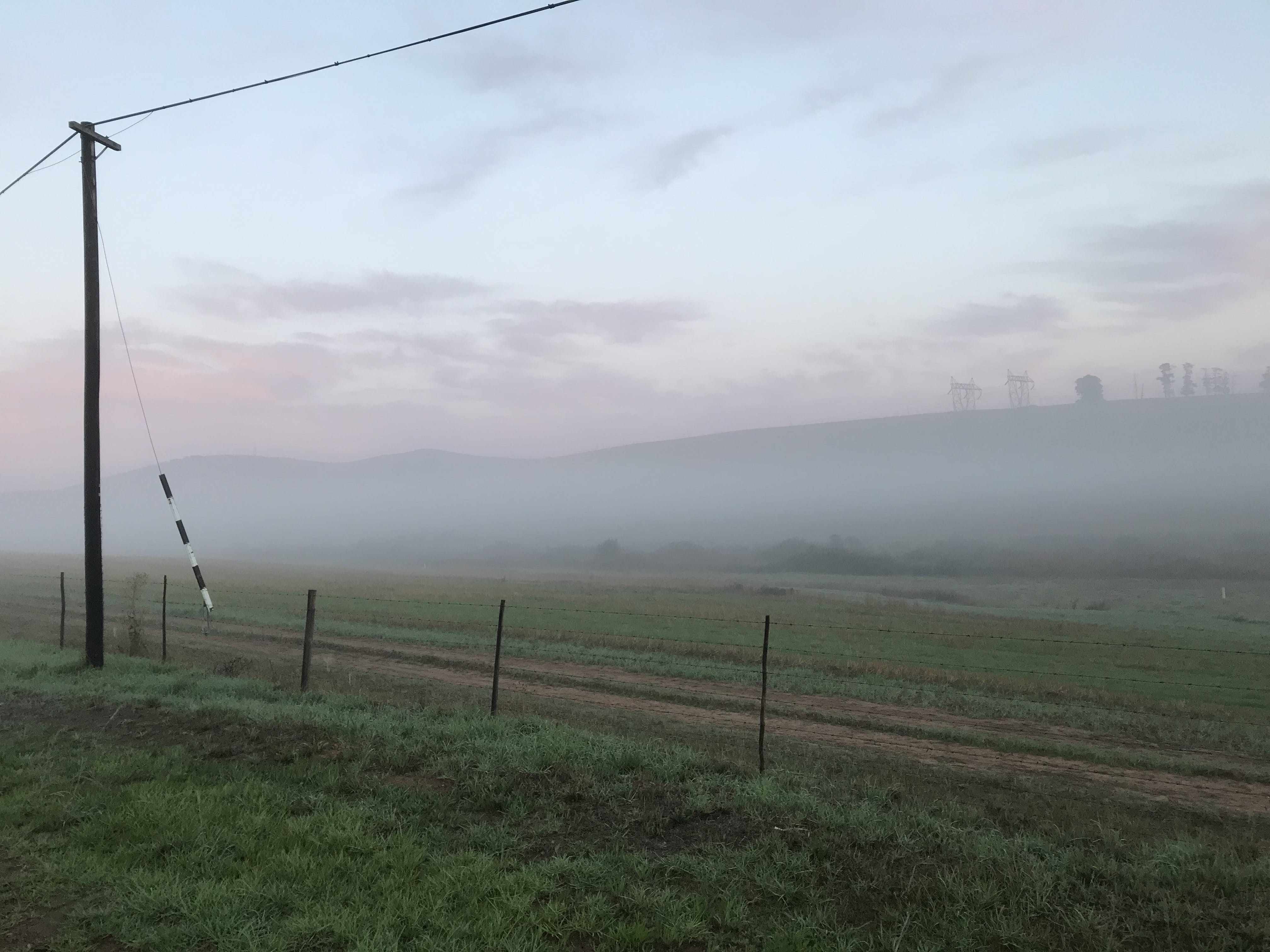 Free stock photo of trees, hill, agriculture, foggy