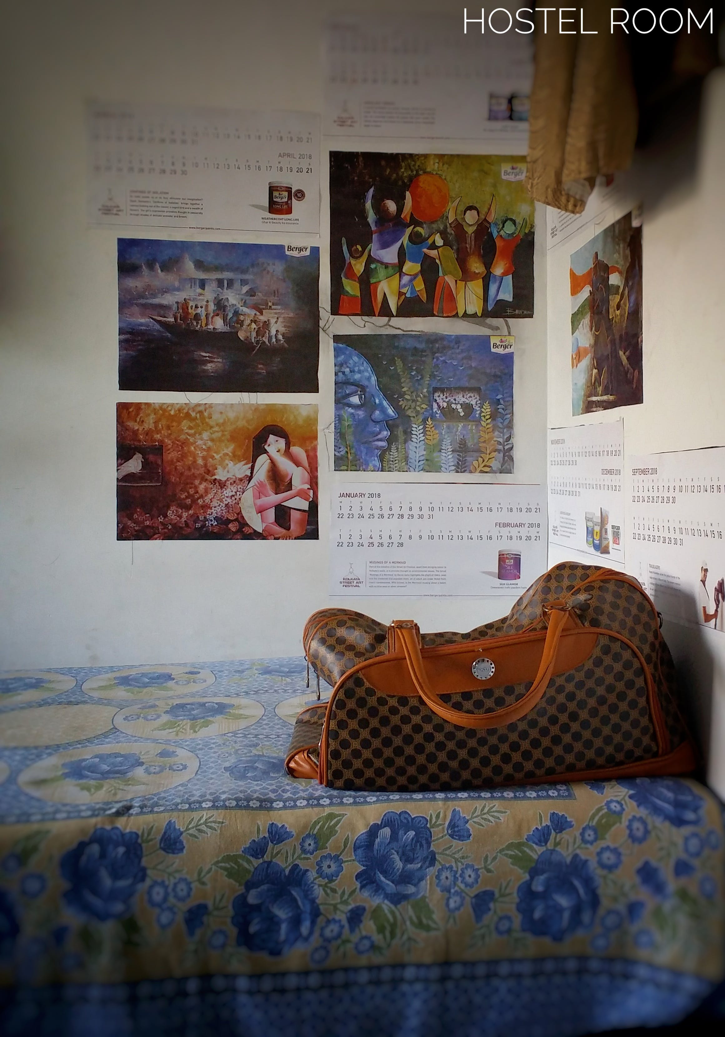 Free stock photo of Sunny Kakati