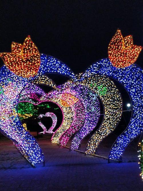 Foto d'estoc gratuïta de clareja, llums, llums de nit, llums del cor