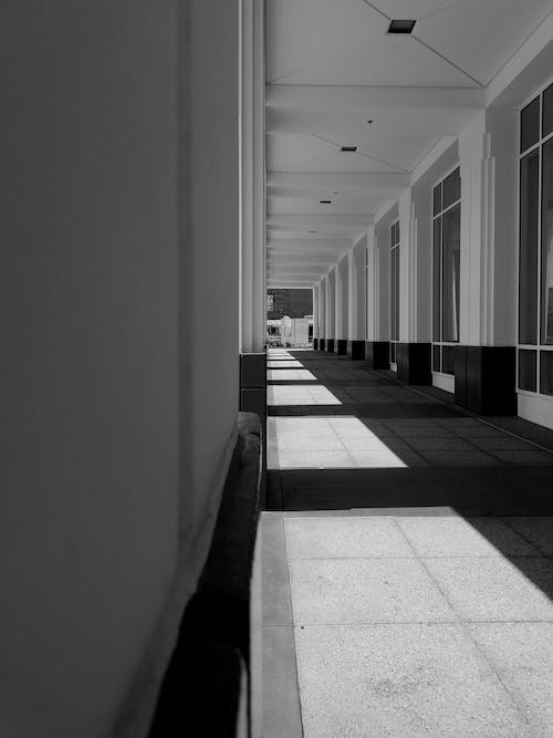 Free stock photo of bw, canon, moving walkway, shadow