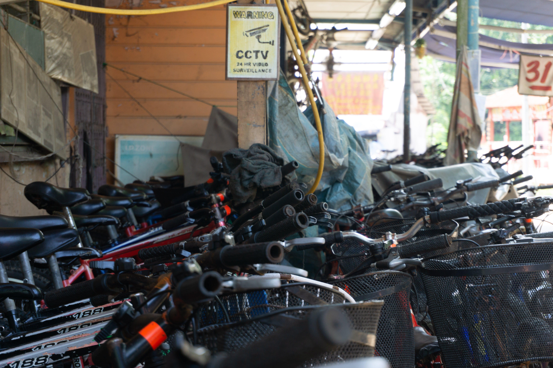Free stock photo of bicycles, pulau ubin, rent, sign