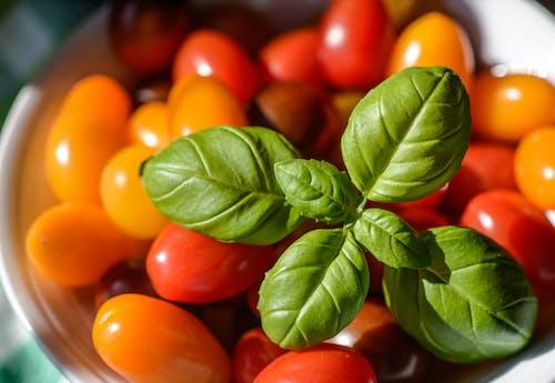 Бесплатное стоковое фото с базилик, вкусный, готовка, еда