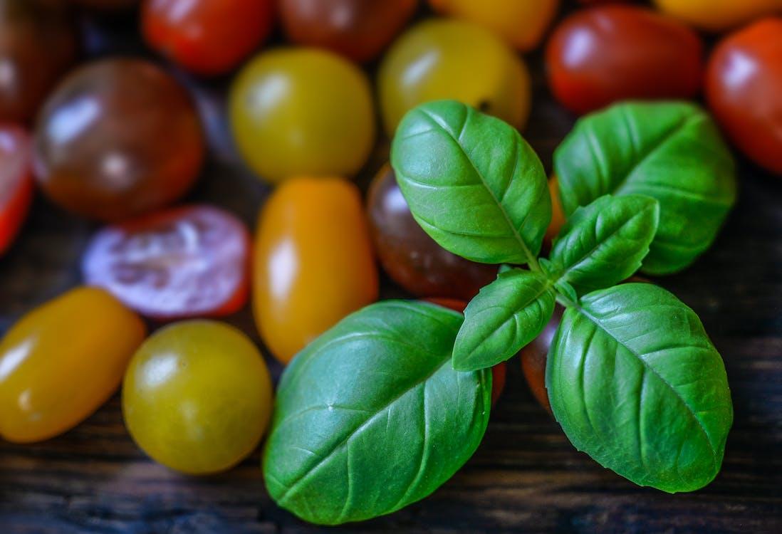 базилик, красный, овощ