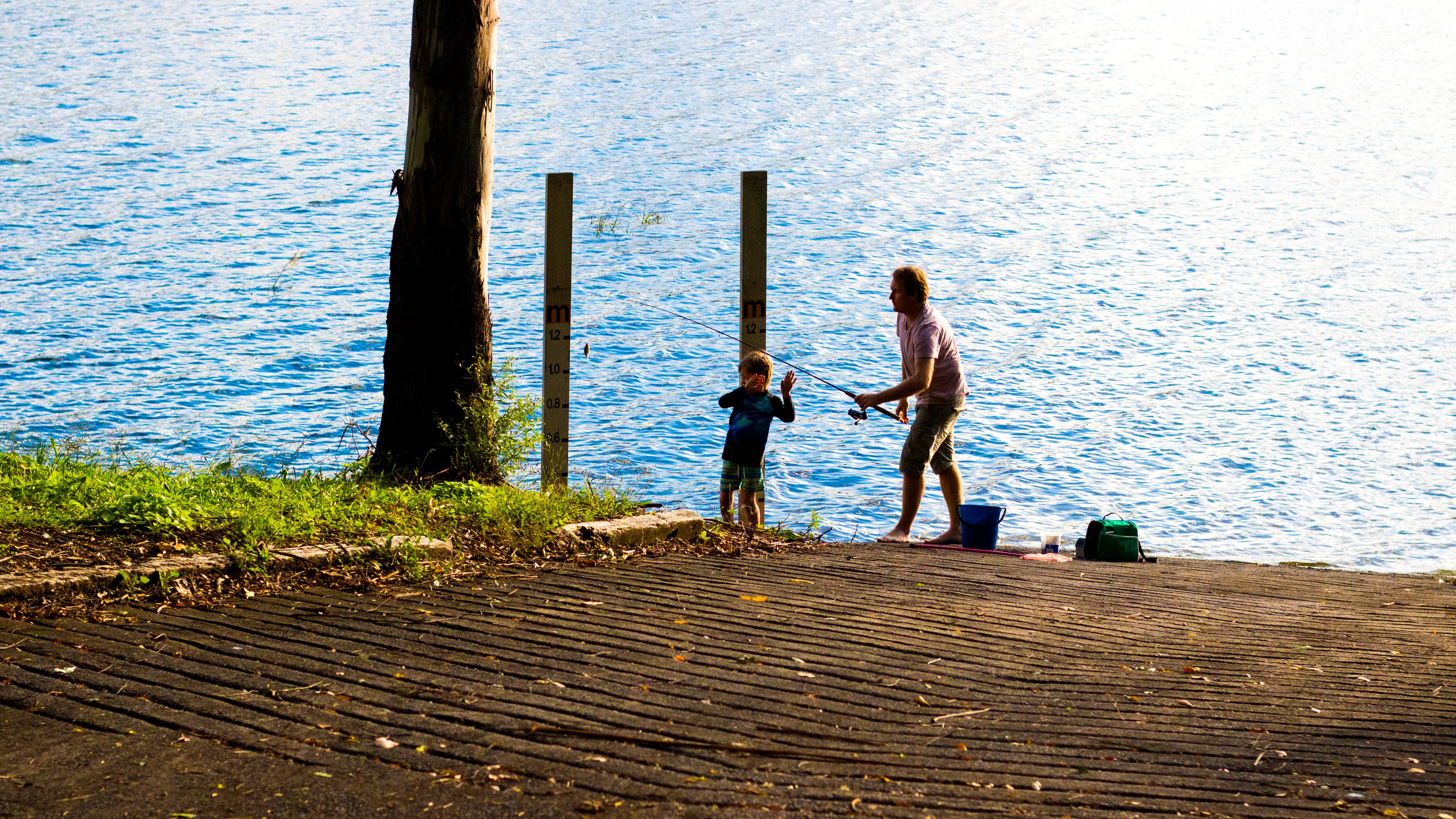Free stock photo of daddy, family, father, fishing
