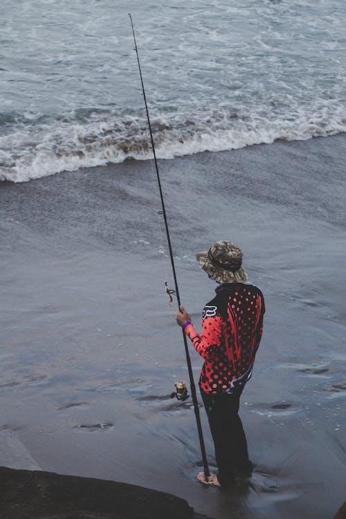 Gratis arkivbilde med basmester, bass fiske, bassmaster, fisk