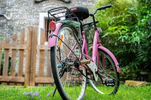 Ingyenes stockfotó bicikli, fa, fókusz, fű témában