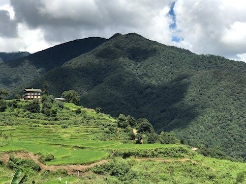 Darmowe zdjęcie z galerii z alpy, bujny, dolina, dom wiejski