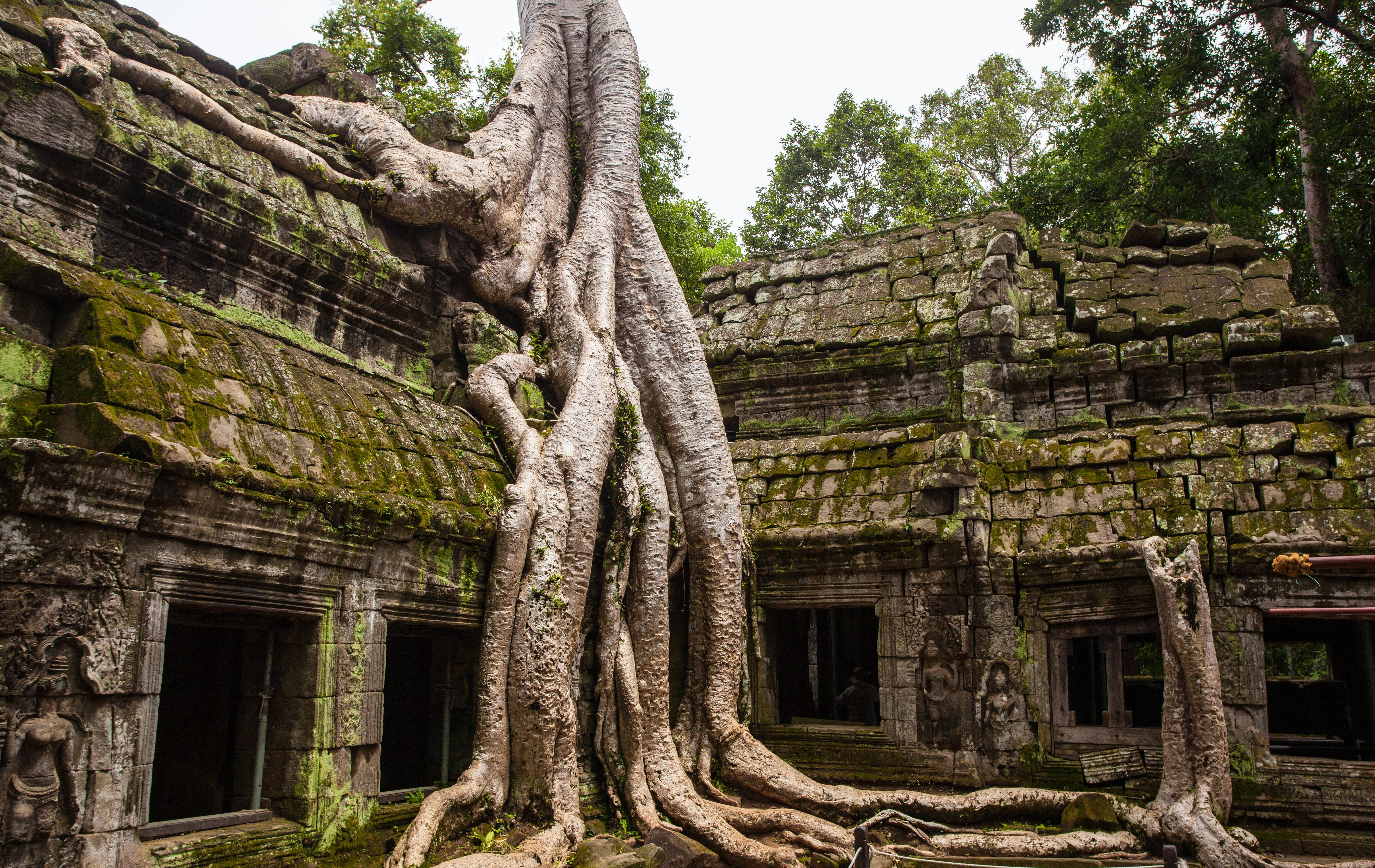 250 Interesting Temple Photos  Pexels  Free Stock Photos-8672