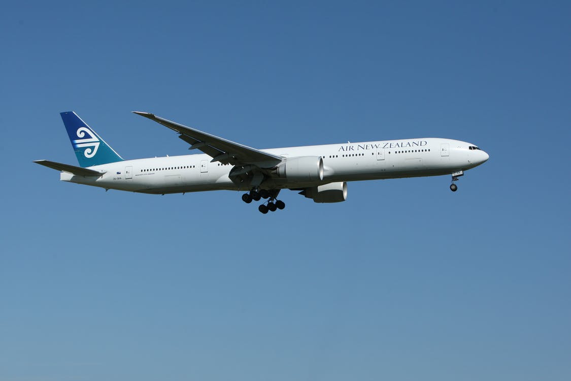 Photo of Air New Zealand in Flight