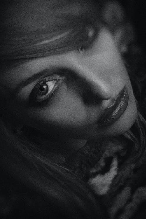 Gratis stockfoto met aantrekkingskracht, bruin haar, dame, donker