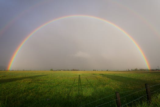 200 great rainbow photos pexels free stock photos