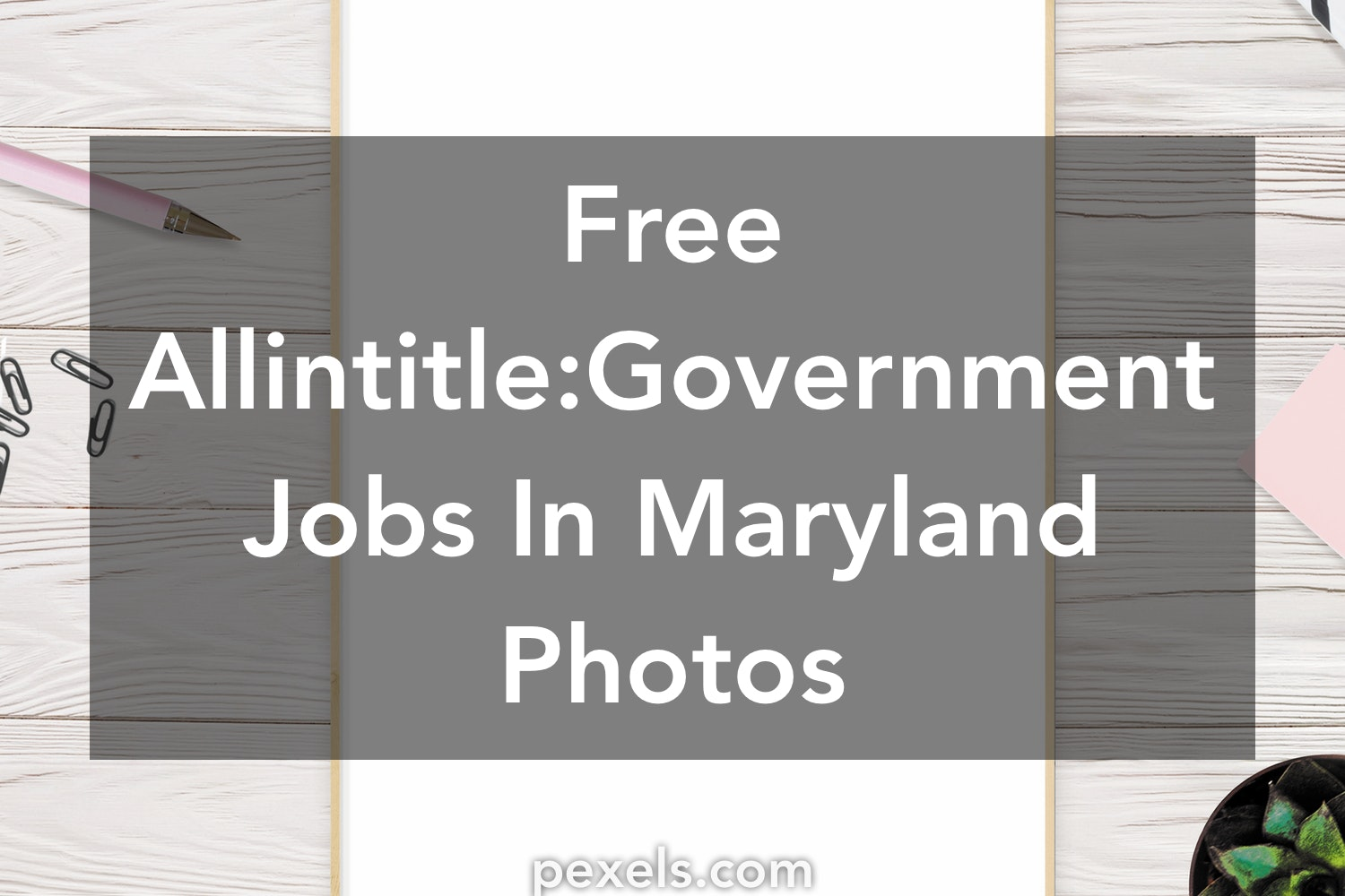 200 Great Allinle Government Jobs In Maryland Photos Pexels Free Stock