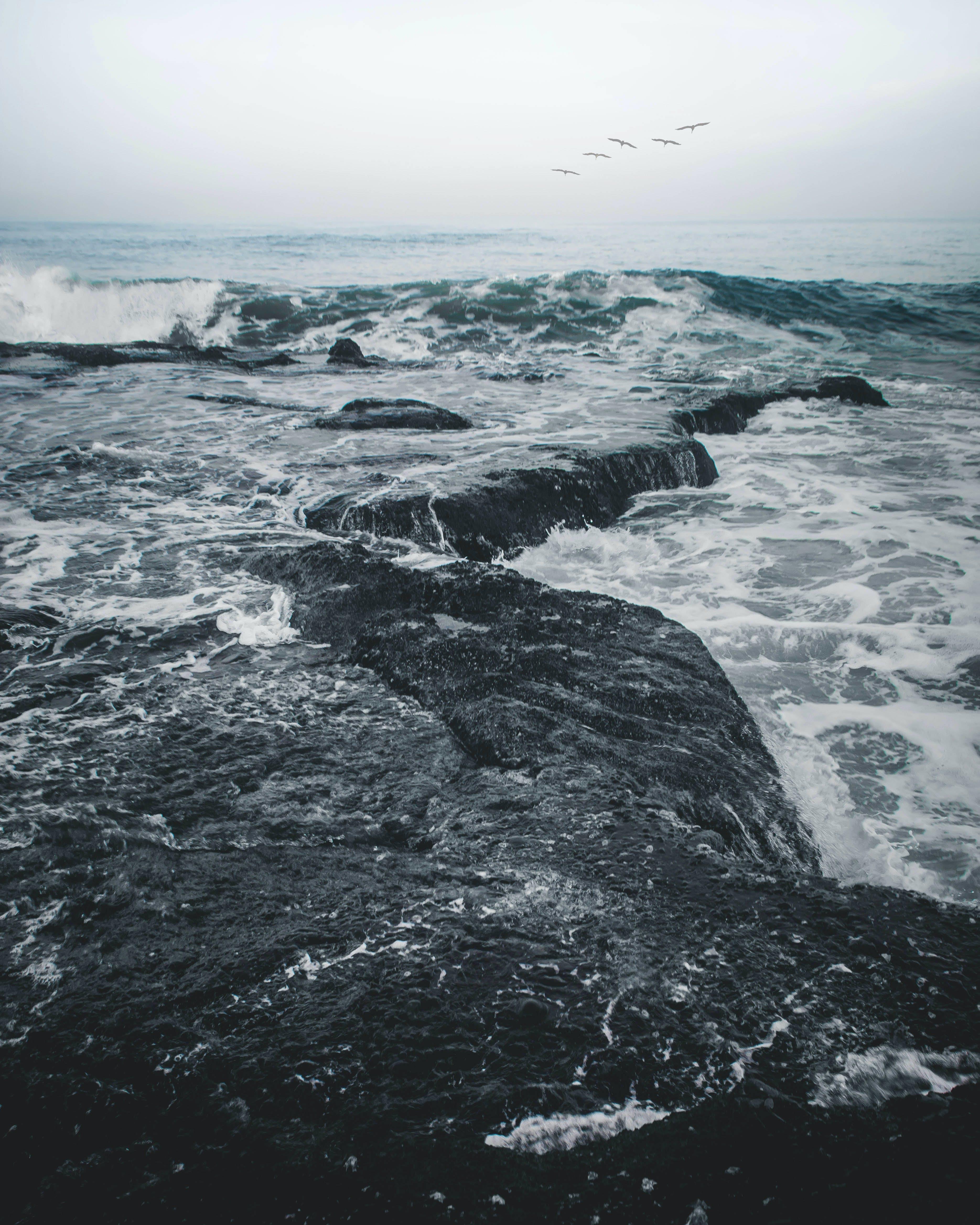 de bord de mer, caillou, cailloux, eau