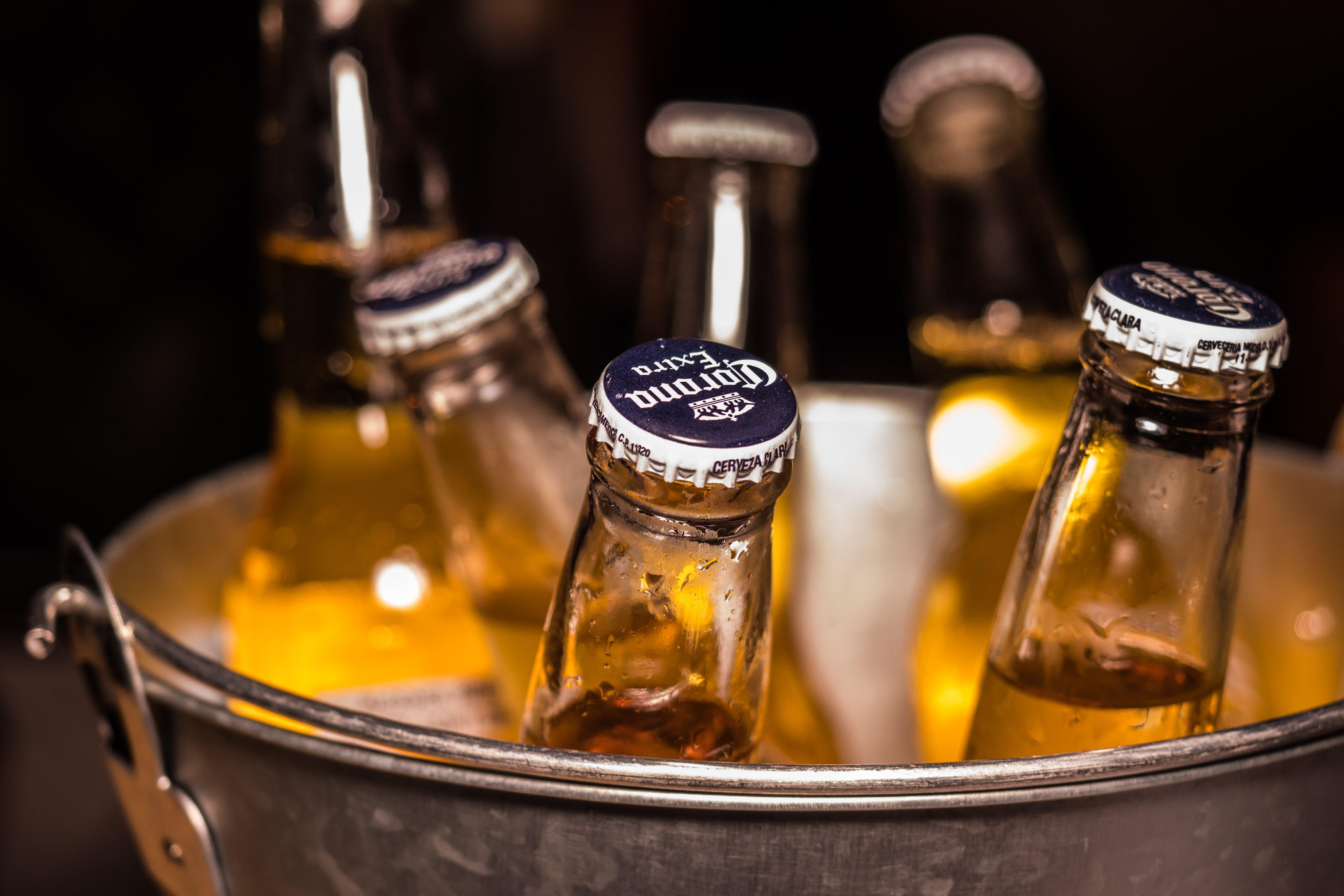 Photo of Corona Extra Bottles on Bucket