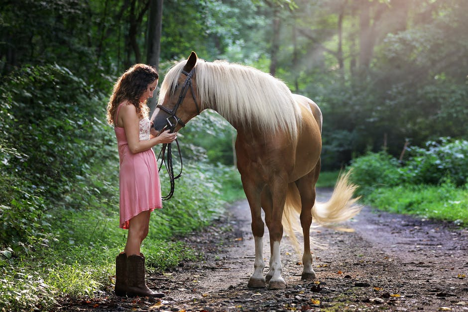 Woman wearing pink dress standing next to brown horse