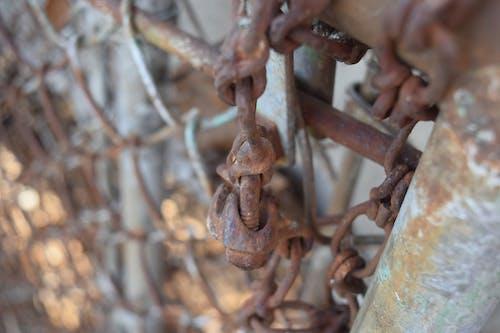 生鏽的柵欄, 鍊式圍欄, 鍊接圍欄, 鏽 的 免費圖庫相片
