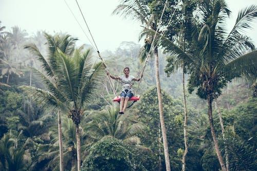 Fotos de stock gratuitas de acantilado, adrenalina, arboles, balanceándose