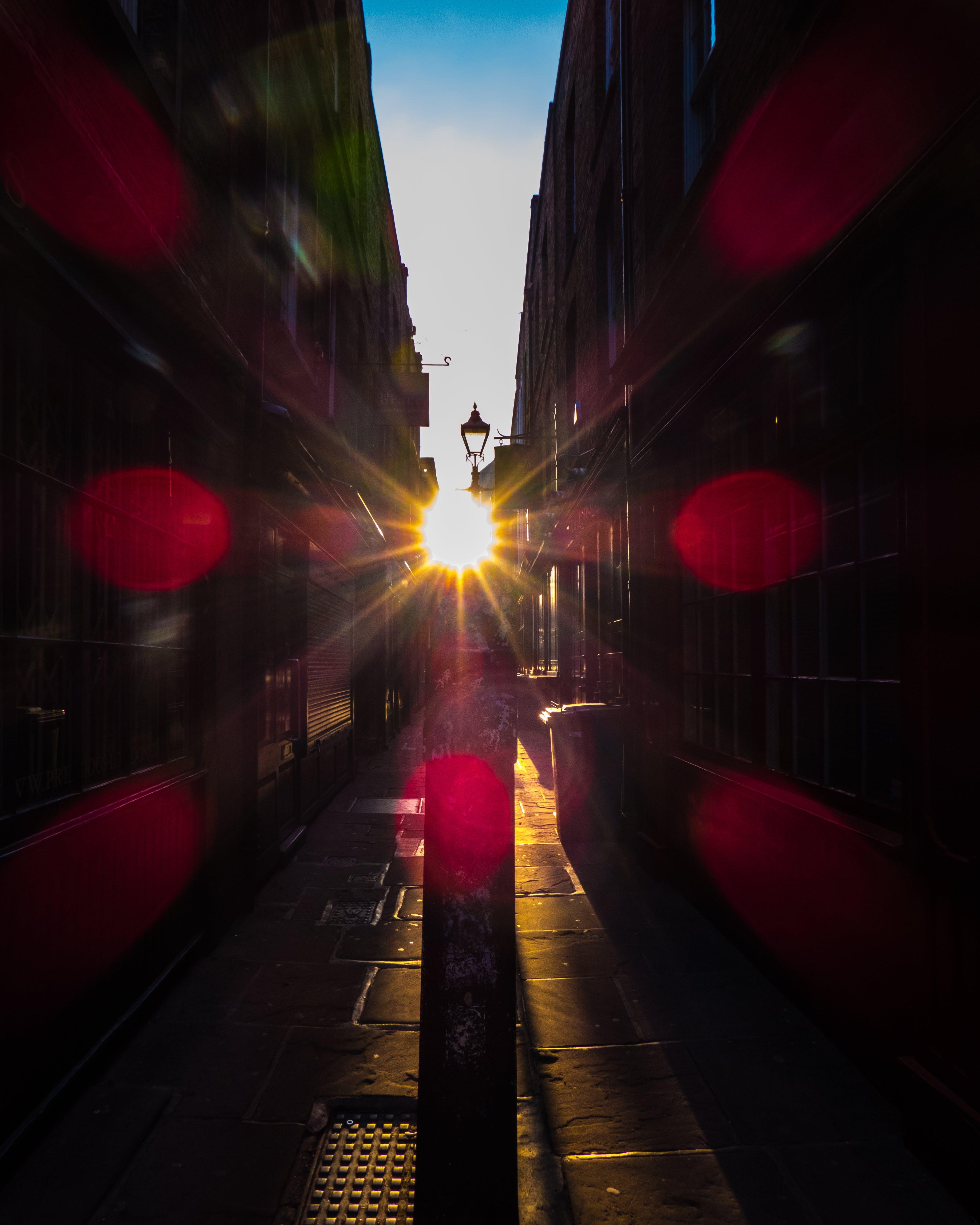 Gratis arkivbilde med london, londres, lysskjær, oxford gate