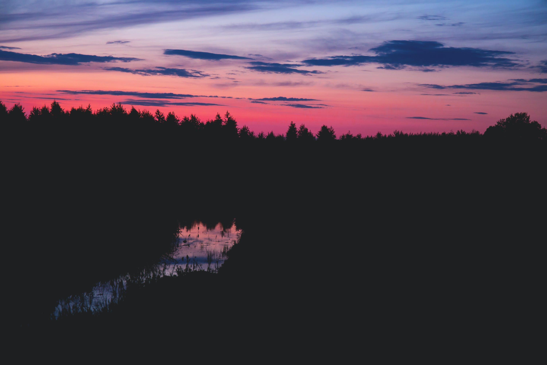 ağaçlar, bulutlar, doğa, gökyüzü içeren Ücretsiz stok fotoğraf